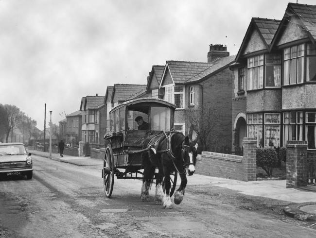 Today's picture from The Bolton News photo archives shows farmer John Stanley of Highfield Road Farm, who still preferred to use his horse and float to do his milk round. The picture was taken in Walker Avenue, Great Lever in 1971.