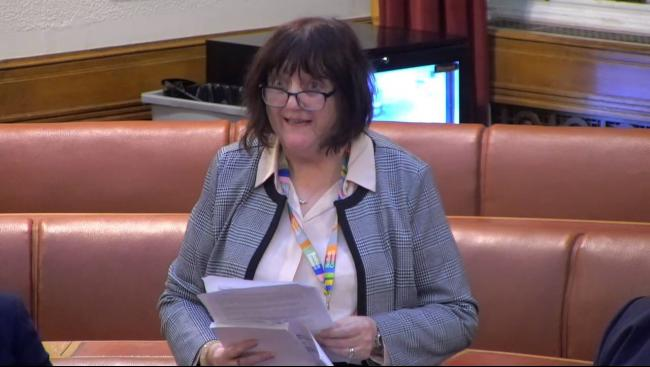 Cllr Susan Baines speaking in council