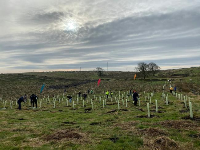 Volunteeers planting trees for the Woodland Trust at the Smithills Estate