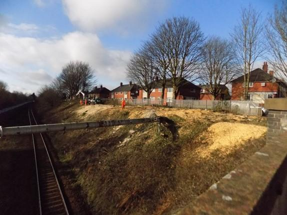 Trees cut down beside Daisy Hill Railway Station