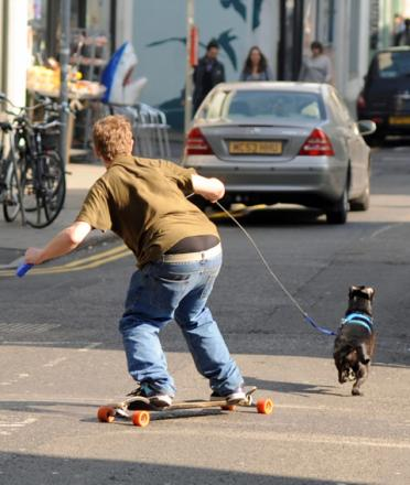 BOARD-ER TERRIER: The dog takes his owner for a ride