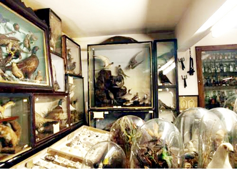 HERITAGE Bacup Natural History Society Museum, above and top, has domestic, industrial, religious and military artefacts