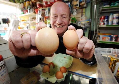 Customers flock to see giant egg at local shop