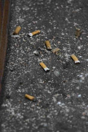 Generic picture of cigarette ends