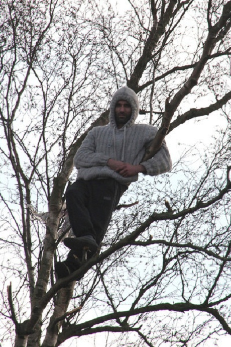 Man stuck up a tree for 16 hours rescued by firefighters
