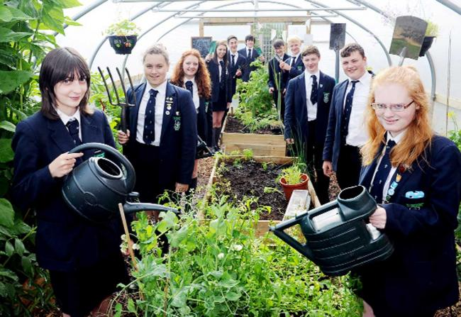 Ellie Wilkin, Daniel Wood and Jennifer Thelwell, all 15, with fellow pupils in the polytunnel
