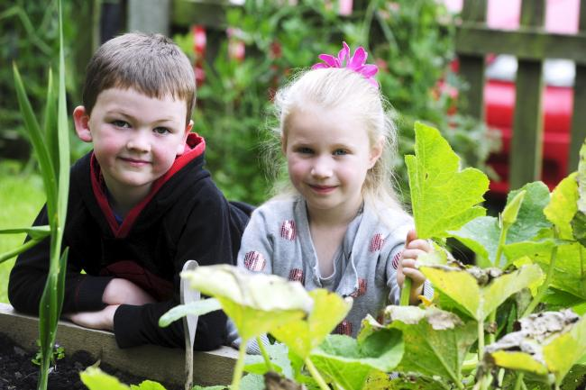 GREEN FINGER Jacob Grant and Stephanie Murphy both aged five from Tottington and Bromley Cross in the vegetable garden