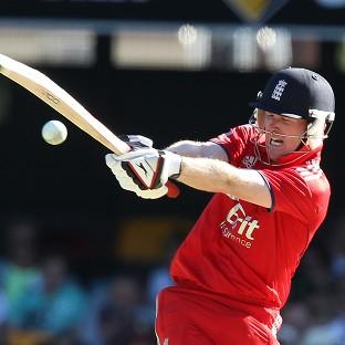 Eoin Morgan lit up the Gabba with back-to-back sixes (AP)