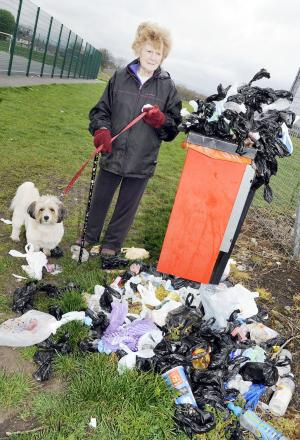 Evelyn Qureshi and dog Pippa survey the mess