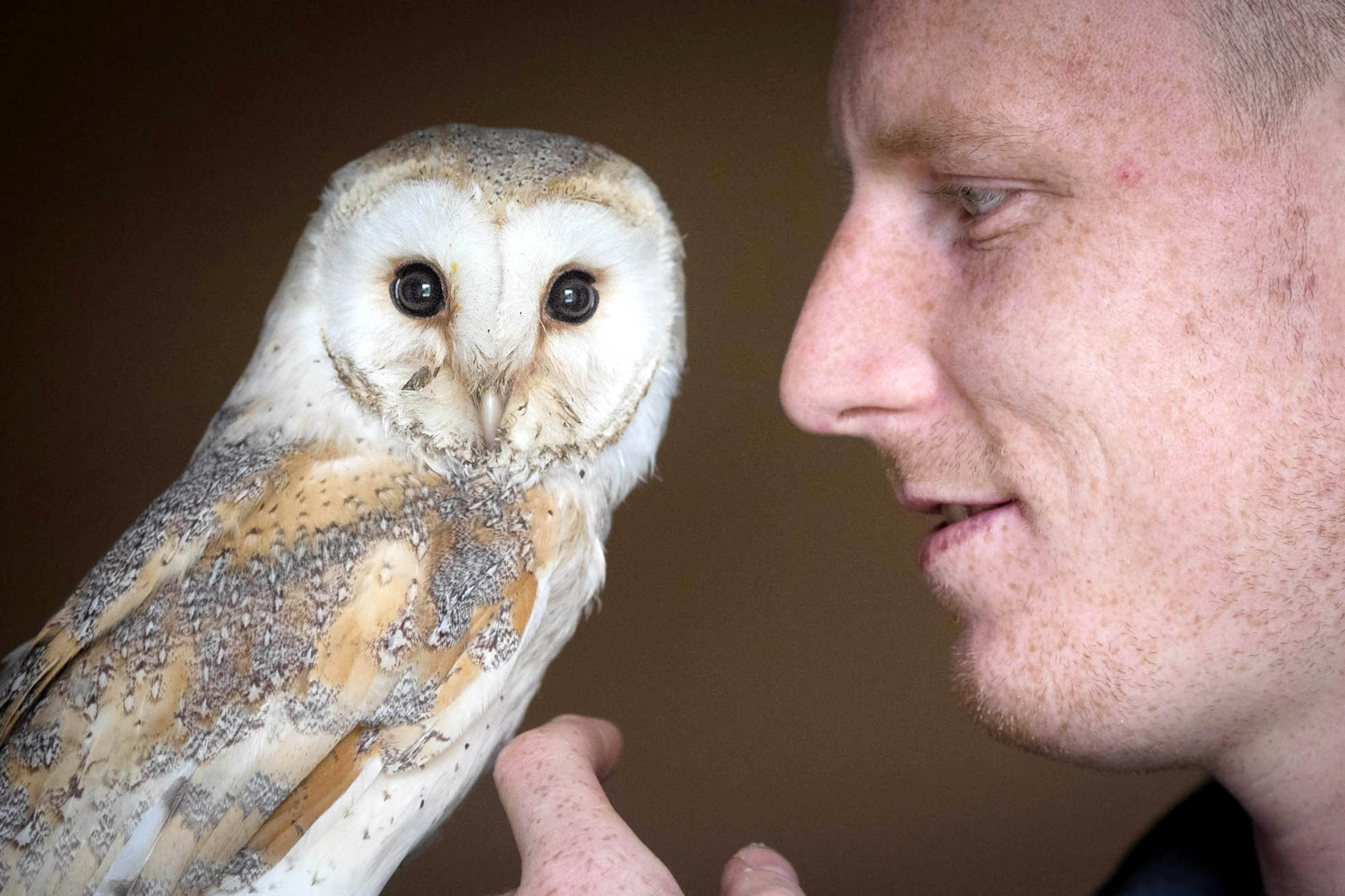 Andrew Ridyard with his pet owl