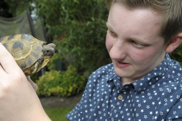 The Bolton News: Arran with Turbo the tortoise