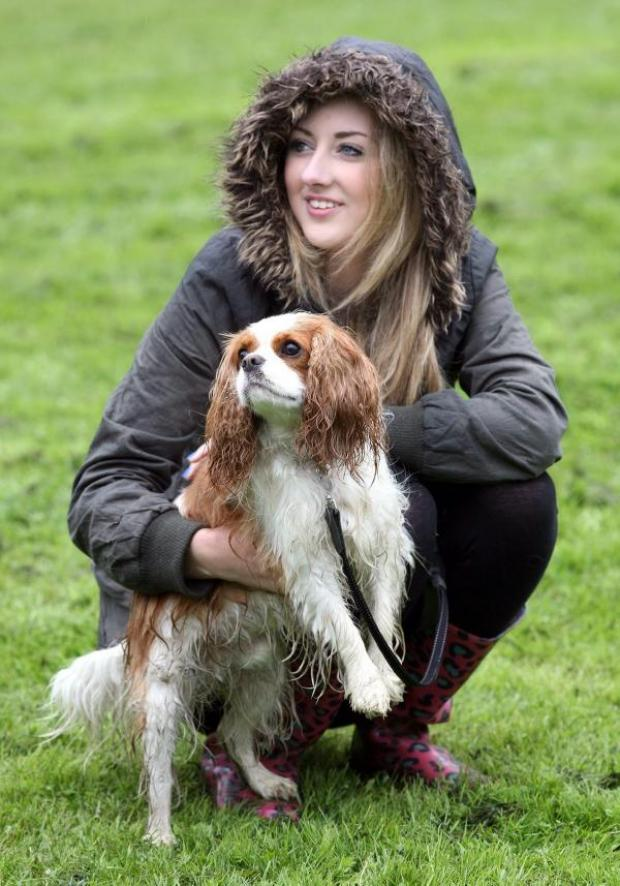 The Bolton News: Action from Scarlett Berry's dog show