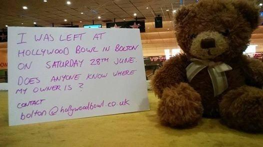 The lost teddy bear that was found at Hollywood Bowl in Middlebrook.