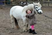 SCHOOL: Jessica Griffiths aged three grooms Carys at Millers Nook Riding School