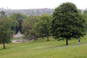 Bolton born and bred: Bolton town centre needs more green spaces