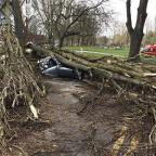 The Bolton News: The scene after a tree brought down by strong winds crushed a car in Birmingham (PA/West Midlands Ambulance Service)