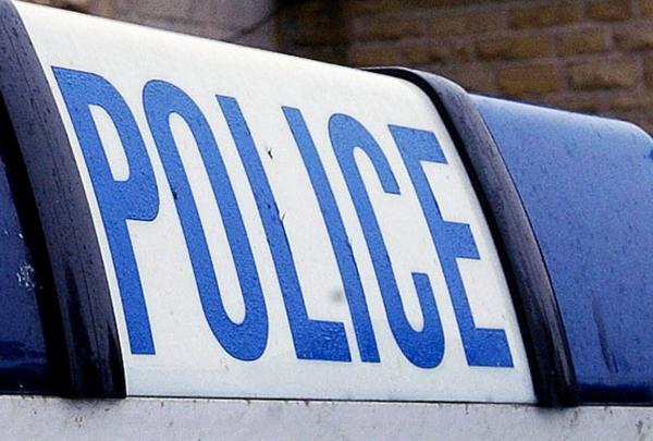Pair arrested on suspicion of assault