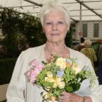 The Bolton News: Dame Judi Dench gets tattoo for 81st birthday