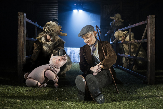 rooz REVIEW: Enchanting little piggy Babe on stage this Easter image