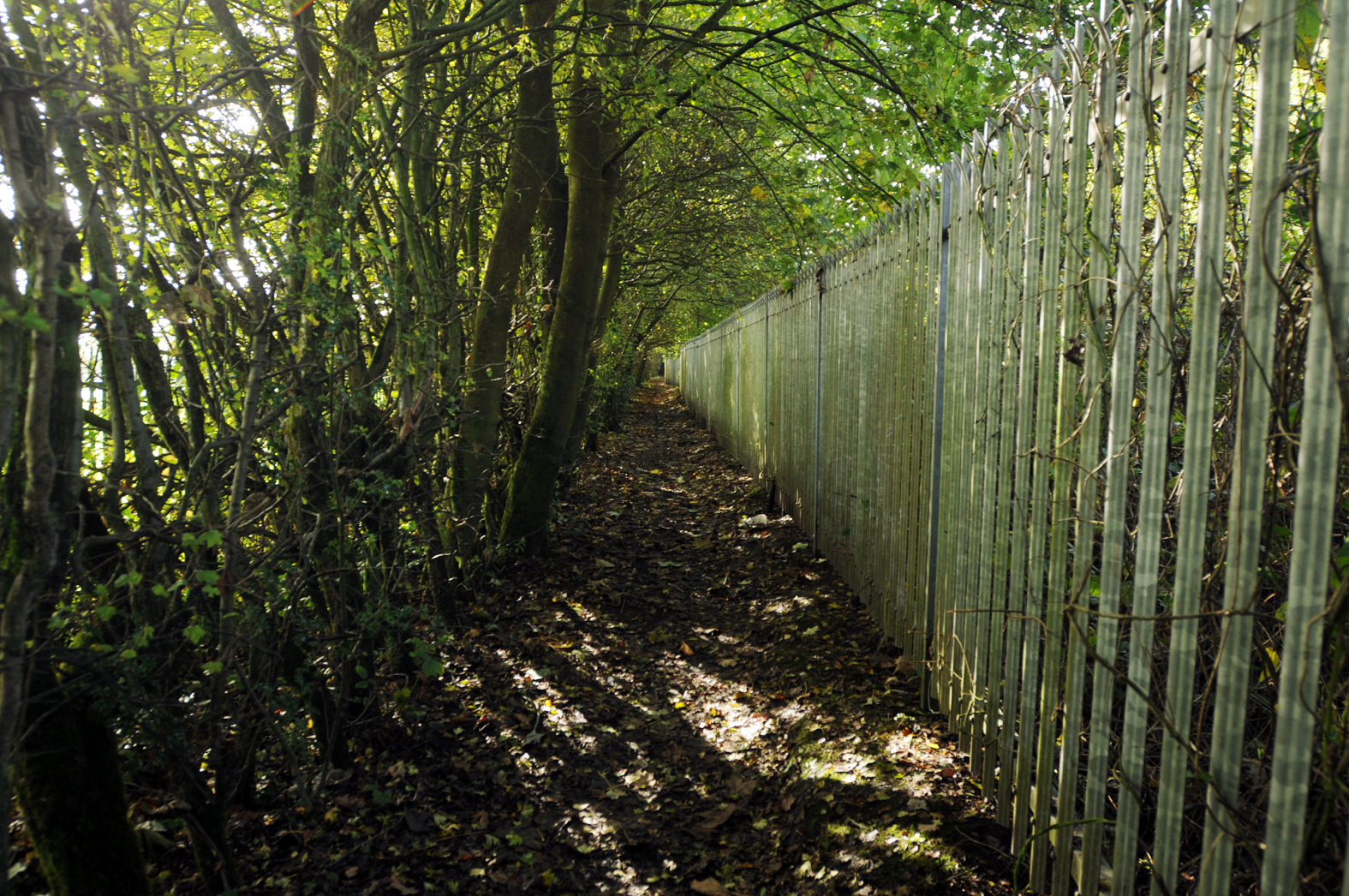 Footpath that runs between Oaks Lane and Darwen Road, Bolton