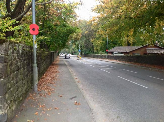 SUPPORT: Poppies on Blackburn Road