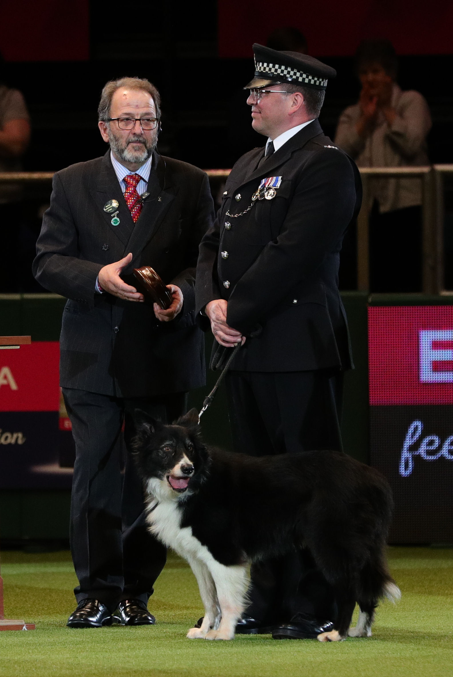 British Transport Police dog Mojo, with handler PC Phil Healy,  is presented with a special award for the work the eight-year-old collie did during the Manchester Arena attack on the final day of Crufts 2018 at the NEC in Birmingham. PRESS ASSOCIATION Pho