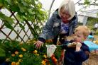 Brandon Mclaughlin aged two smells the flowers with his grandma during an open day at The Hive, Moss Bank Park, Bolton
