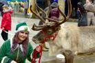Lydia Smith with Freddie the reindeer on Victoria Square as part of the Bolton Winter festival.