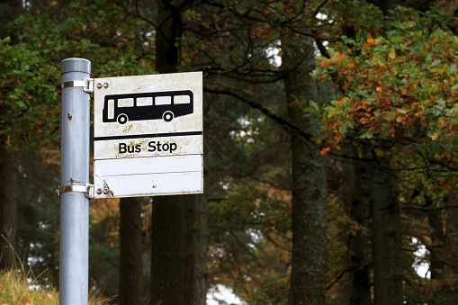 Calls for hi-tech bus stops that give schedules in real-time