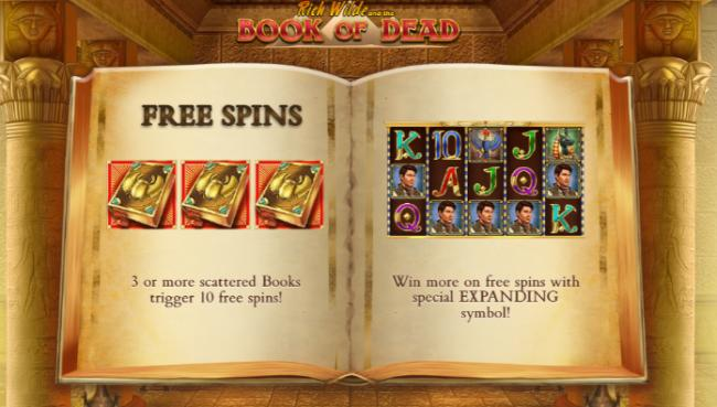 New casino sites for the                    popular Play 'n Go game Book of Dead